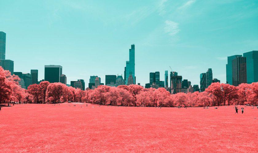 central-park-new-york-infrared-3
