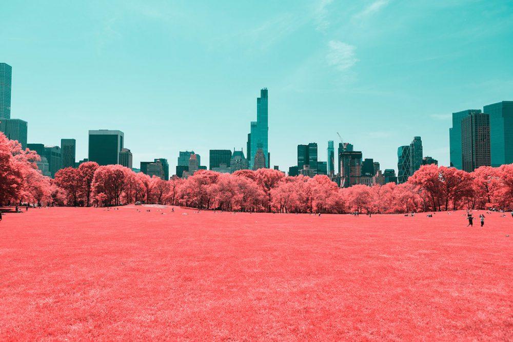 Begini Jika Taman Kota New York Difoto Secara Infrared