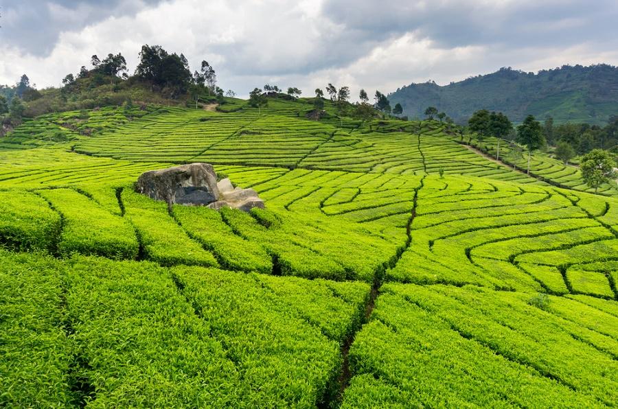 Ide Destinasi Liburan ke Bandung yang Asik nan Seru!