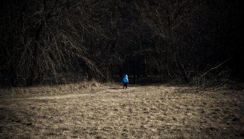 Anak Hilang di Hutan