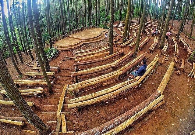 hutan-pinus-imogiri-bantul-6
