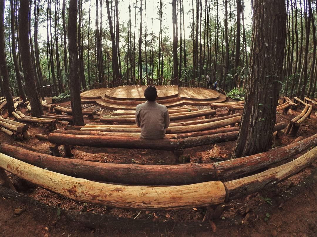 hutan-pinus-imogiri-bantul-7