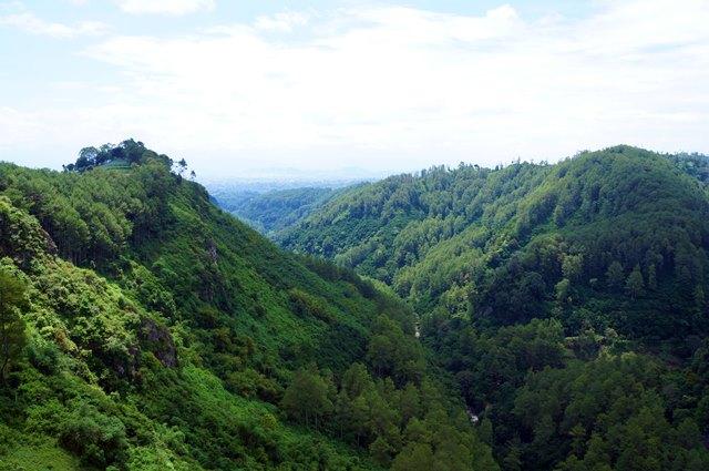 Pemandangan Tahura Juanda dari Tebing Keraton.