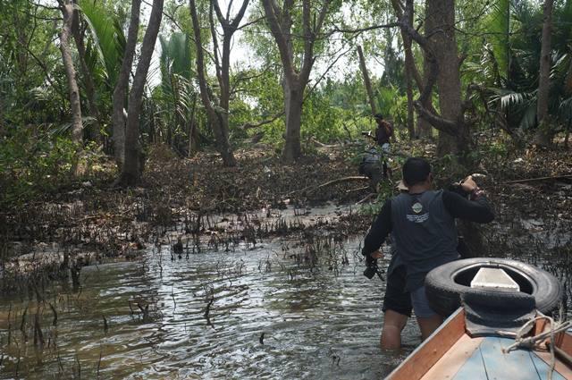 pulau-kaget-dengan-banyak-pohon-rumbai-tempat-tinggal-para-bekantan
