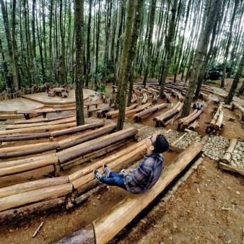 Mendunia, Ini Panggung Hutan Pinus Mangunan Dlingo, Bantul, Jogjakarta