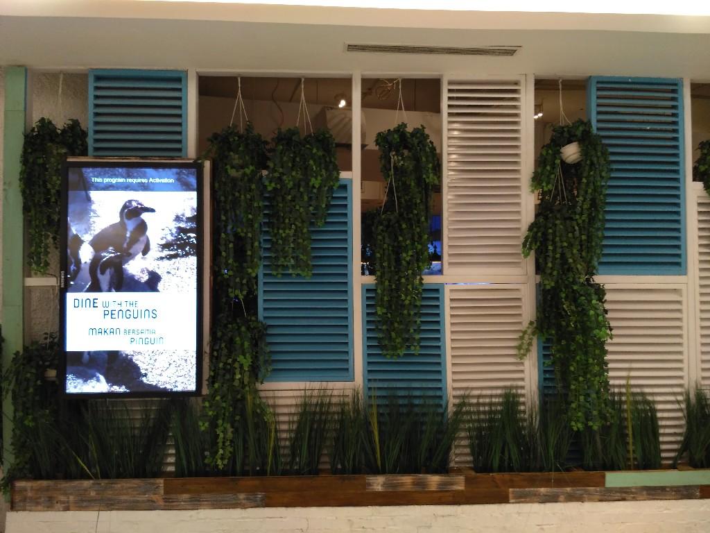 Menikmati Seafood Bersama Penguin Di Resto Pingoo Jakarta Aquarium Et Ticket Reguler Weekday Akan Menjadi Salah Satu Lembaga Konservasi Ex Situ Indonesia