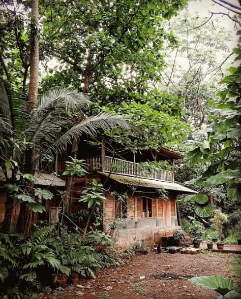 kampung 99 Pepohonan Depok