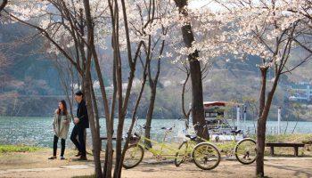 pasangan-di-korea-selatan