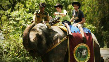 taman safari indonesia bogor