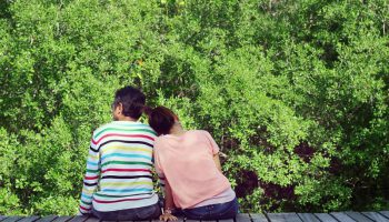 couple-in-mangrove-forest
