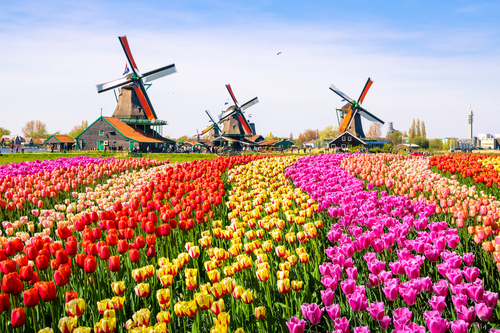 Jangan Lakukan Hal Ini Saat Liburan di Belanda!