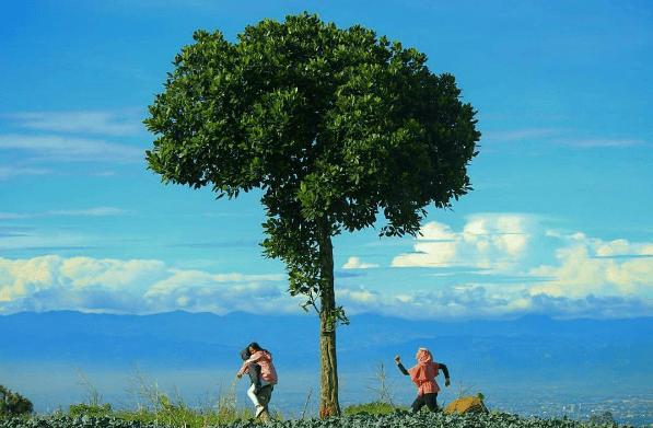 7 Tempat Main di Bandung yang Paling Menyenangkan