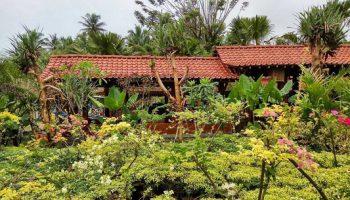 Kampung Flory Yogyakarta Instagram