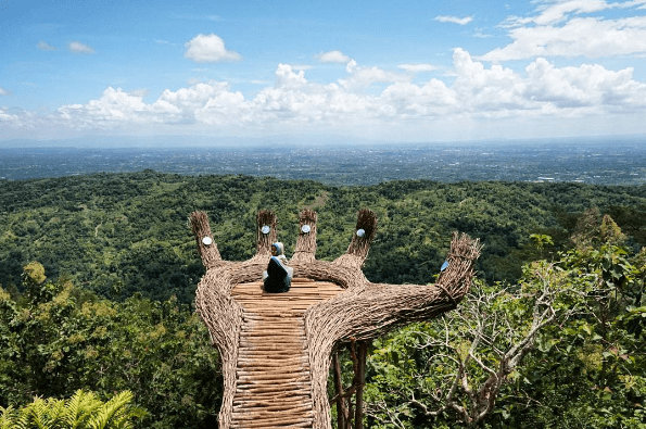 hutan pinus pengger-min