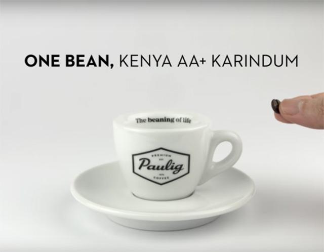 kopi terkecil di dunia