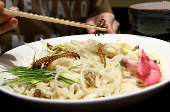 A customer eats an 'Insect tsukemen' ramen noodle topped with fried worms and crickets at 'Ramen Nagi' restaurant in Tokyo