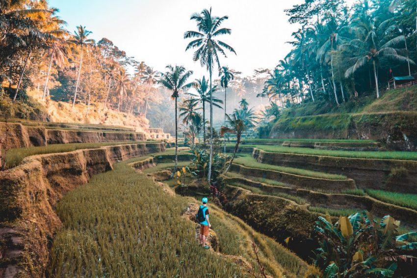 Ini dia Daftar 20 Negara Terindah di Dunia, Indonesia di Urutan Berapa?