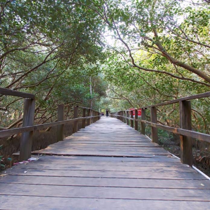 Wisata Alam Semarang Mangrove Tapak
