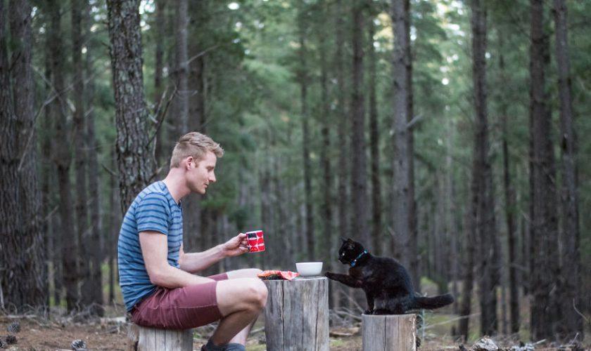traveling bareng kucing (3)