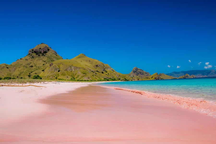 6 Pantai Pink Paling Indah di Dunia, Salah Satunya di Indonesia