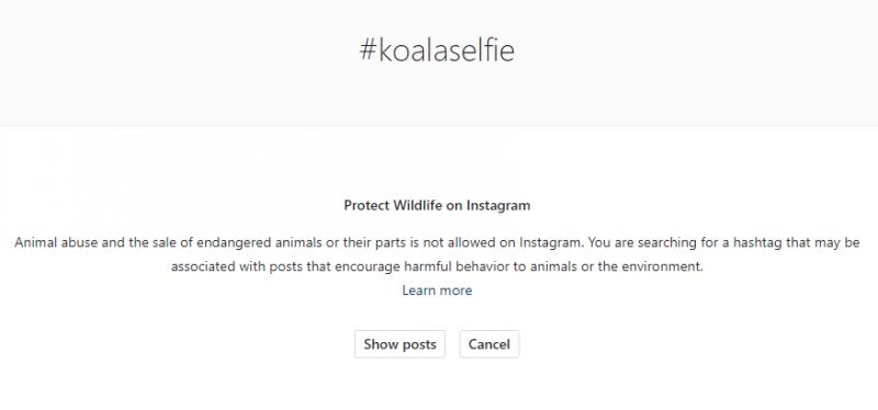 selfie dengan hewan