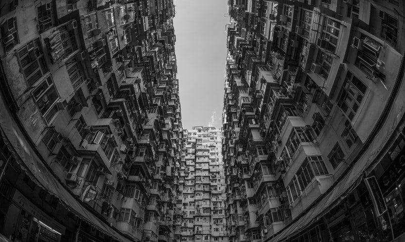 pexels-photo-584191