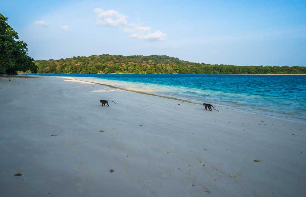 6 Hal Seru yang Bisa Kalian Lakukan di Tanjung Lesung