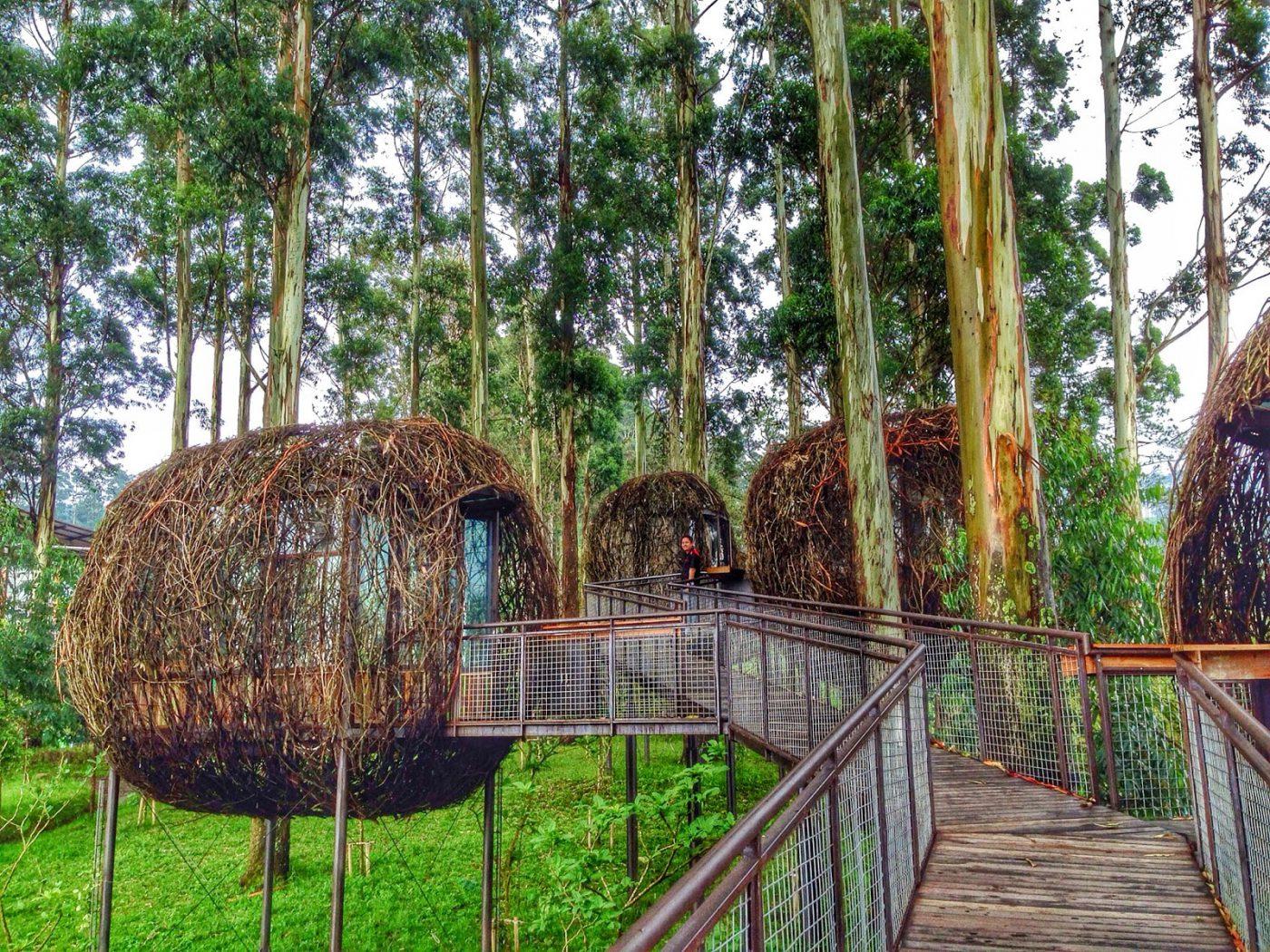 Dusun Bambu Bandung – Menyatu Dengan Alam Sambil Berwisata