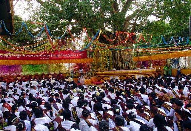festival Kason