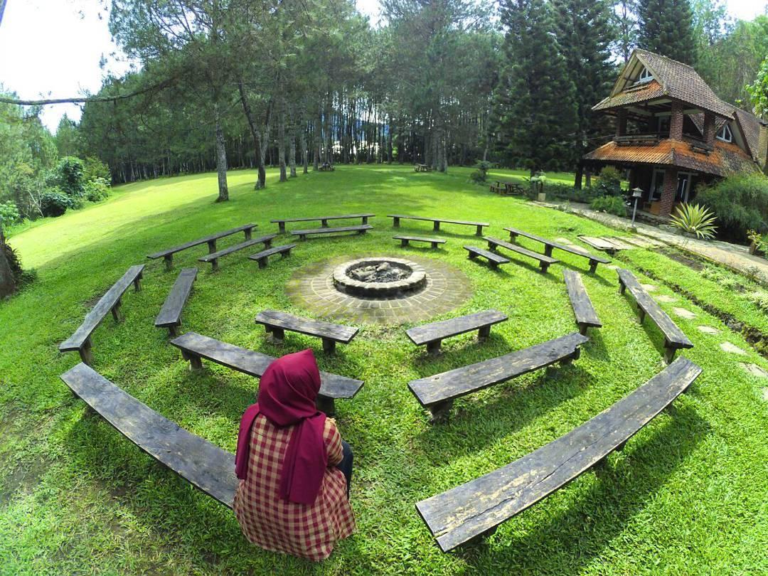 5 Hutan Pinus Di Bandung Yang Harus Kalian Kunjungi Reservasi
