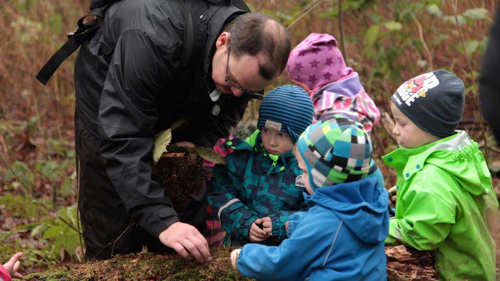 Begini yang Anak-Anak Pelajari di Sekolah Alam di Jerman