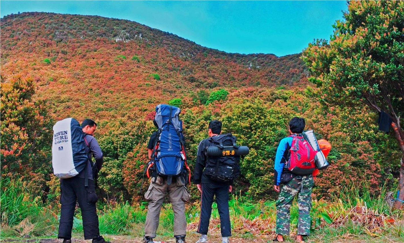 Netizen Kaget Tiket Masuk Gunung Papandayan Hampir 100k Per-Orang