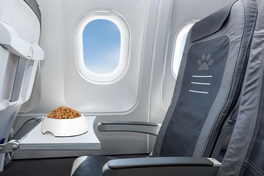 Jangan Pesan Makanan dan Minuman Ini Kalau Lagi Naik Pesawat!