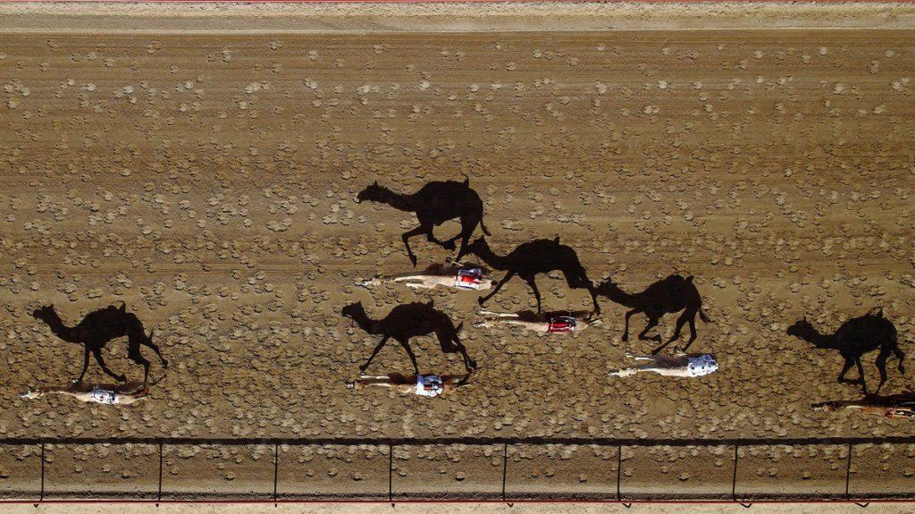 al-marmoun-vertical-race-track-dubai-uae-by-shoyab