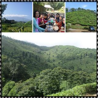 sumber : nannisa7.blogspot.com