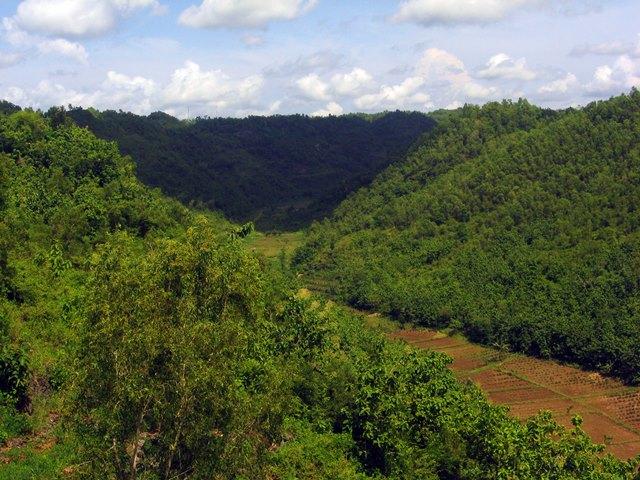 Sungai Bengawan Solo Purba