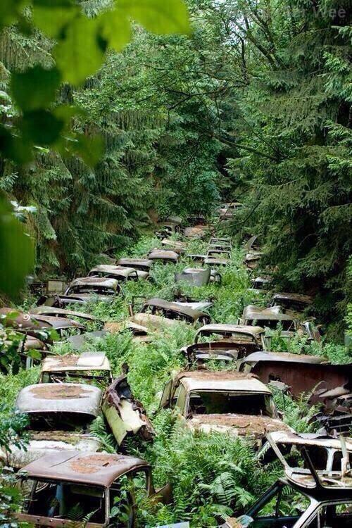 mobil-tua-yang-telah-ditinggalkan-di-ardennes-prajurit-amerika-serikat-meninggalkan-mobil-mobil-ini-setelah-perang-dunia-ii-usai