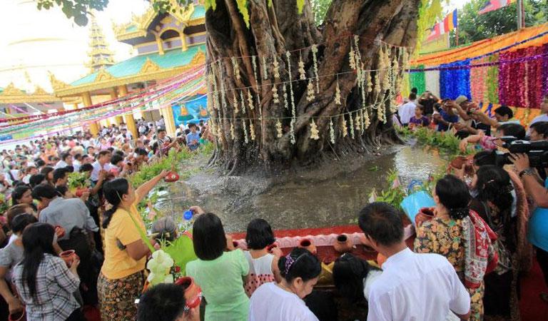 Ritual penyiraman Pohon Bodhi