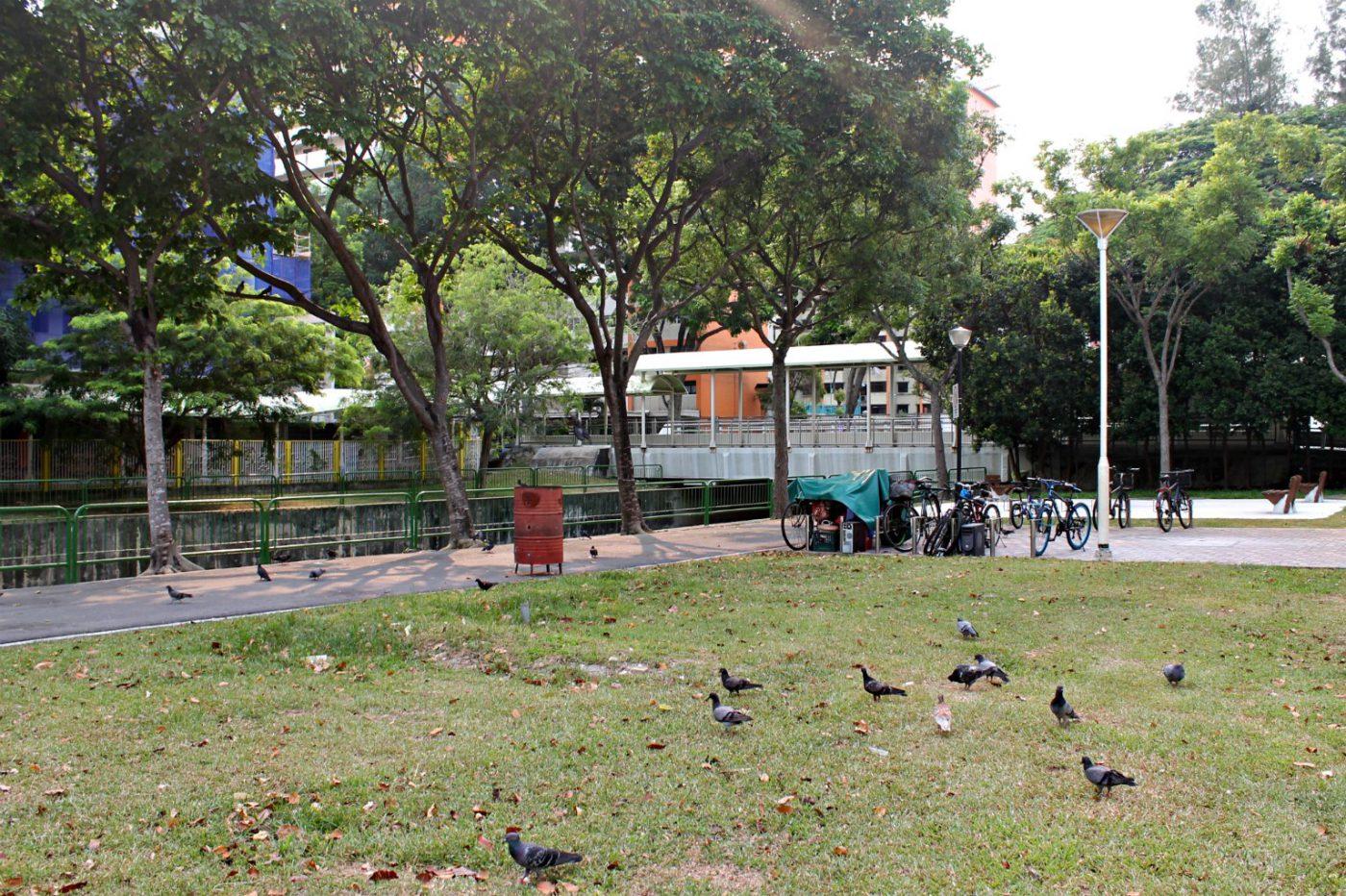 Singapore Urban Park (Istimewa/Ruth Nina)