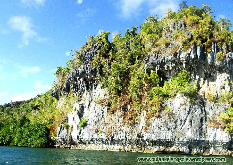 Karang Pulau Buano