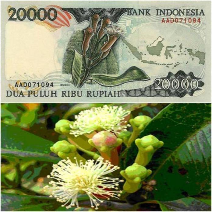 mata uang destinasi indonesia