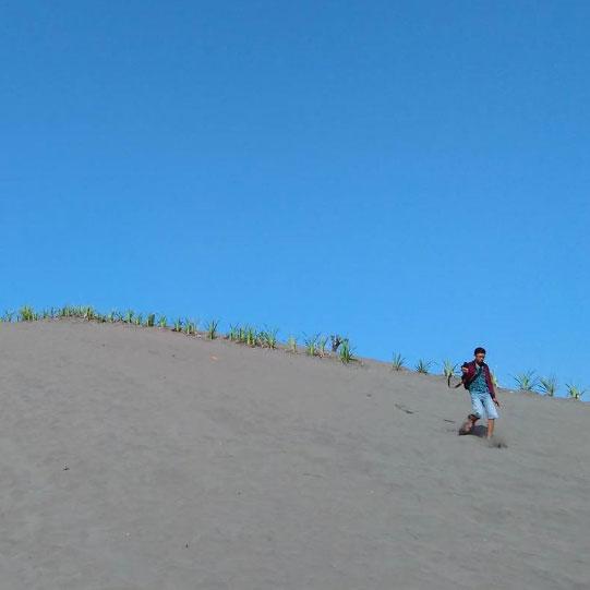 gumuk-pasir-parangkusumo-gunung-kidul-yogyakarta-2