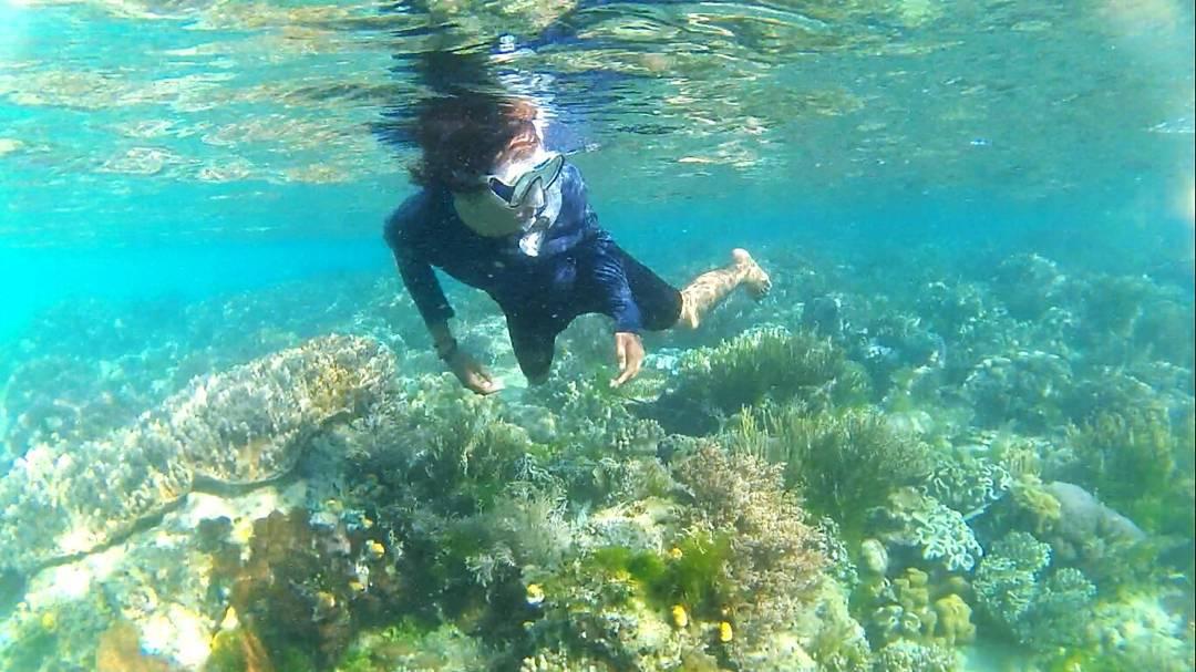 snorkeling di pulau marsegu IG @darmawan_dwi