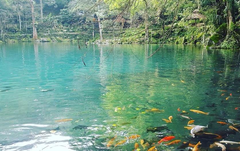 Telaga Cicerem Kuningan, Danau Biru yang Terkenal karena Sosial Media