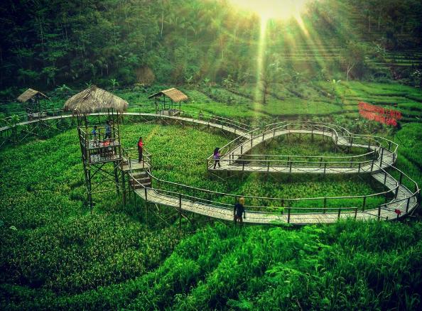Jembatan Cinta Pring Wulung, Pesona Unik dari Purbalingga