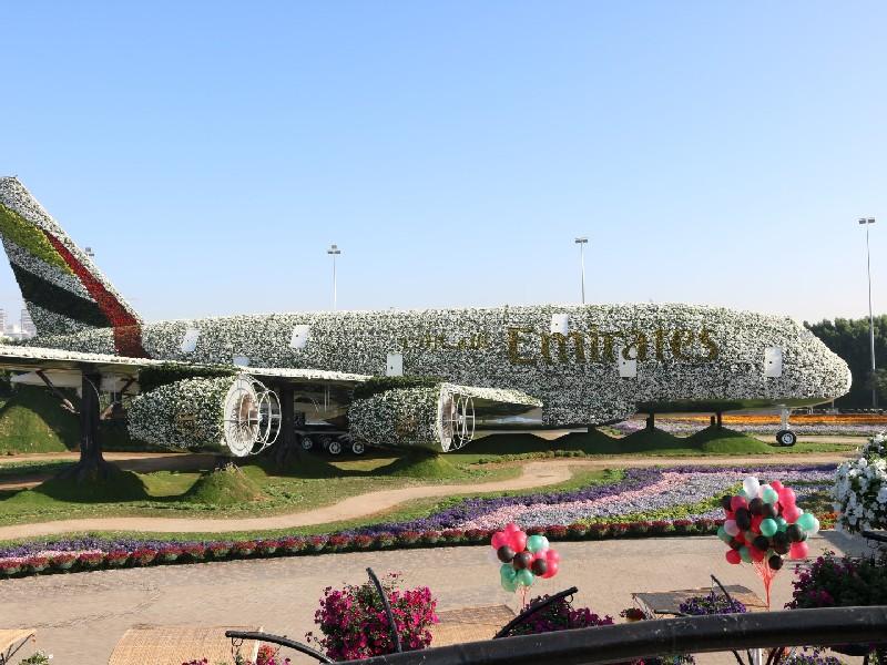Dubai Miracle Garden Hadirkan Replika Pesawat Terbesar dari Bunga Indah