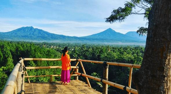 Bukit Mondoleko Banyuwangi, Wisata Baru yang Menyajikan Spot Selfie dari Ketinggian