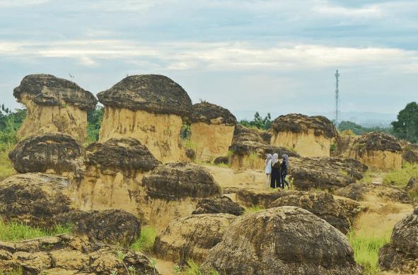 Bukit Jamur Gresik, Tempat Wisata Unik dan Pertama di Indonesia