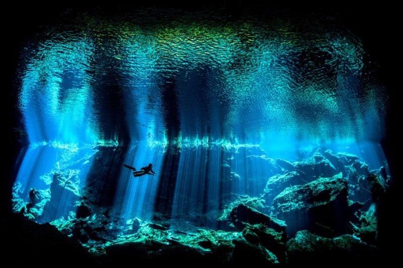juara foto underwater 2017