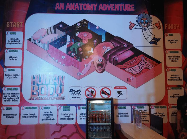 Human Body Adventures